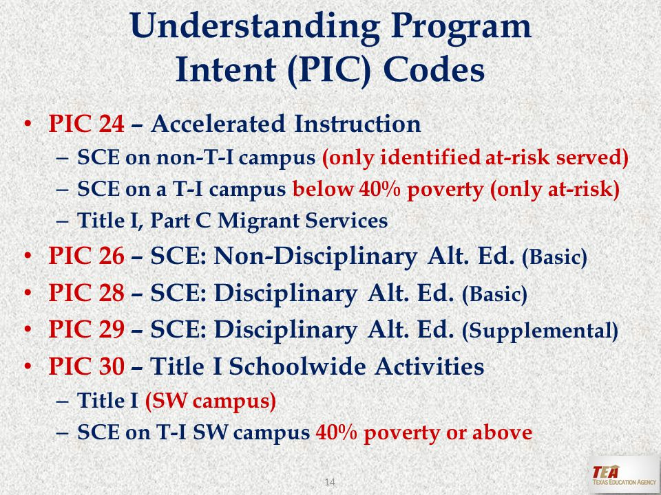 Understanding Program Intent (PIC) Codes PIC 24 – Accelerated Instruction – SCE on non-T-I campus (only identified at-risk served) – SCE on a T-I campus below 40% poverty (only at-risk) – Title I, Part C Migrant Services PIC 26 – SCE: Non-Disciplinary Alt.