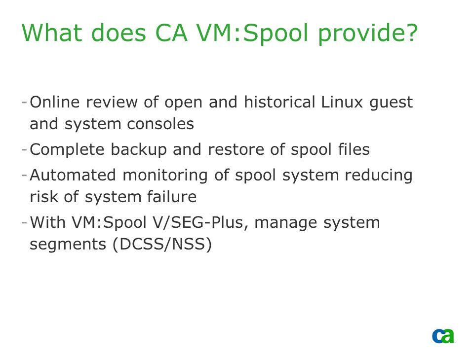 Copyright 2002, Computer Associates International, Inc What does CA VM:Spool provide.