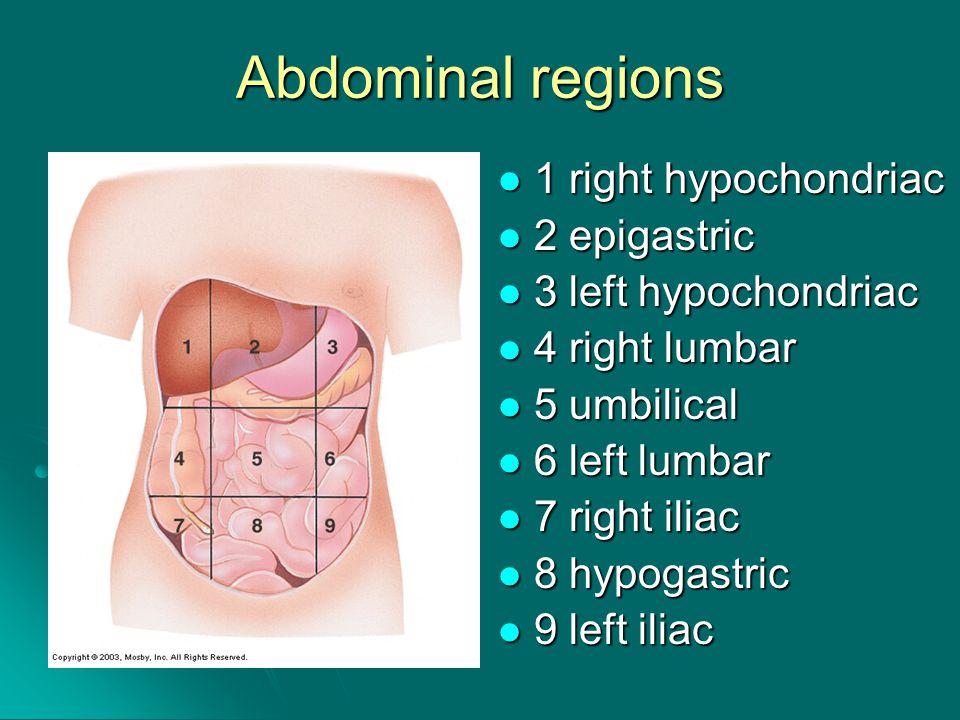 Abdominal regions 1 right hypochondriac 1 right hypochondriac 2 epigastric 2 epigastric 3 left hypochondriac 3 left hypochondriac 4 right lumbar 4 right lumbar 5 umbilical 5 umbilical 6 left lumbar 6 left lumbar 7 right iliac 7 right iliac 8 hypogastric 8 hypogastric 9 left iliac 9 left iliac