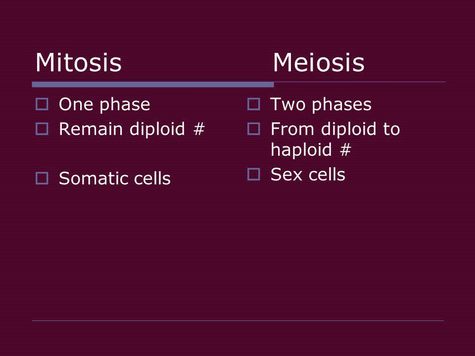 Mitosis Meiosis  One phase  Remain diploid #  Somatic cells  Two phases  From diploid to haploid #  Sex cells