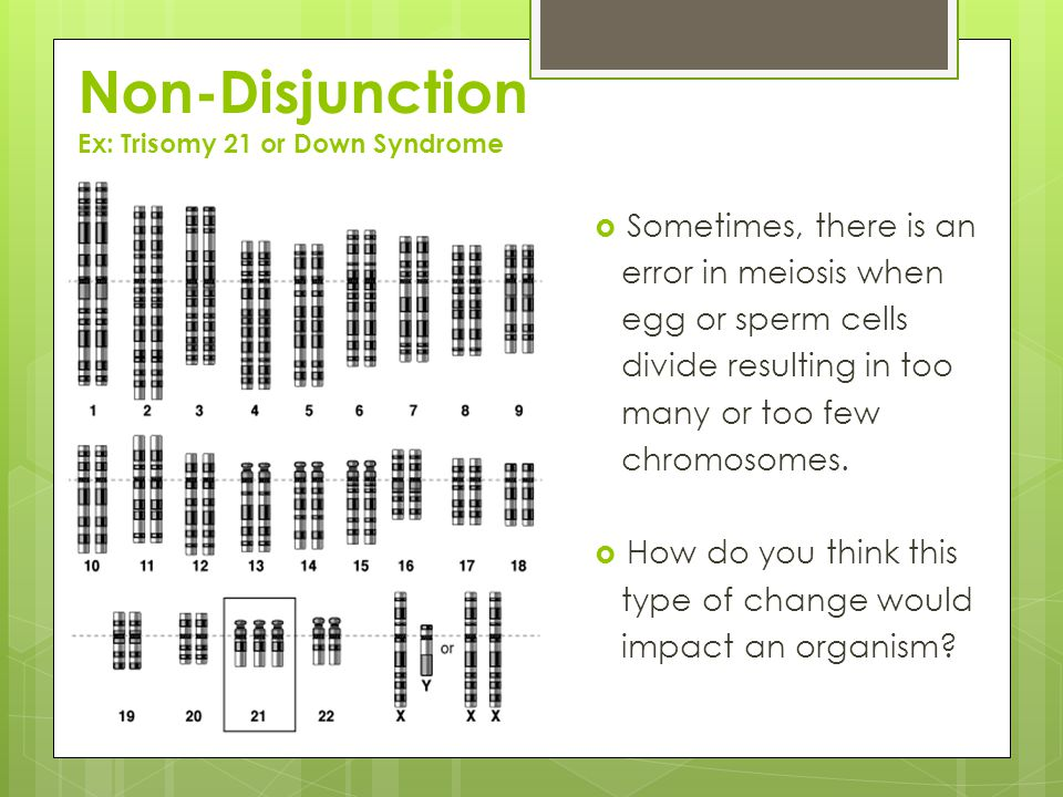 Non-Disjunction Ex: Trisomy 21 or Down Syndrome  Sometimes, there is an error in meiosis when egg or sperm cells divide resulting in too many or too