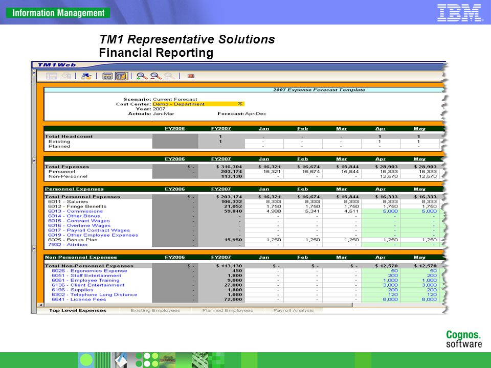 TM1 Representative Solutions Financial Reporting