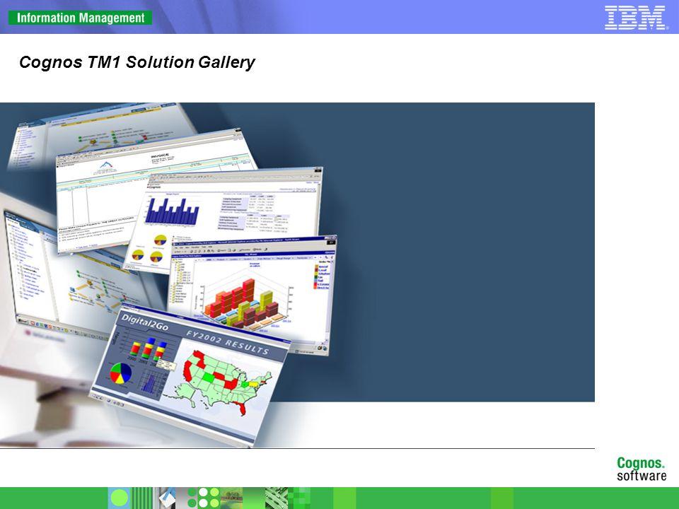 TM1 Representative Solutions Executive Dashboard