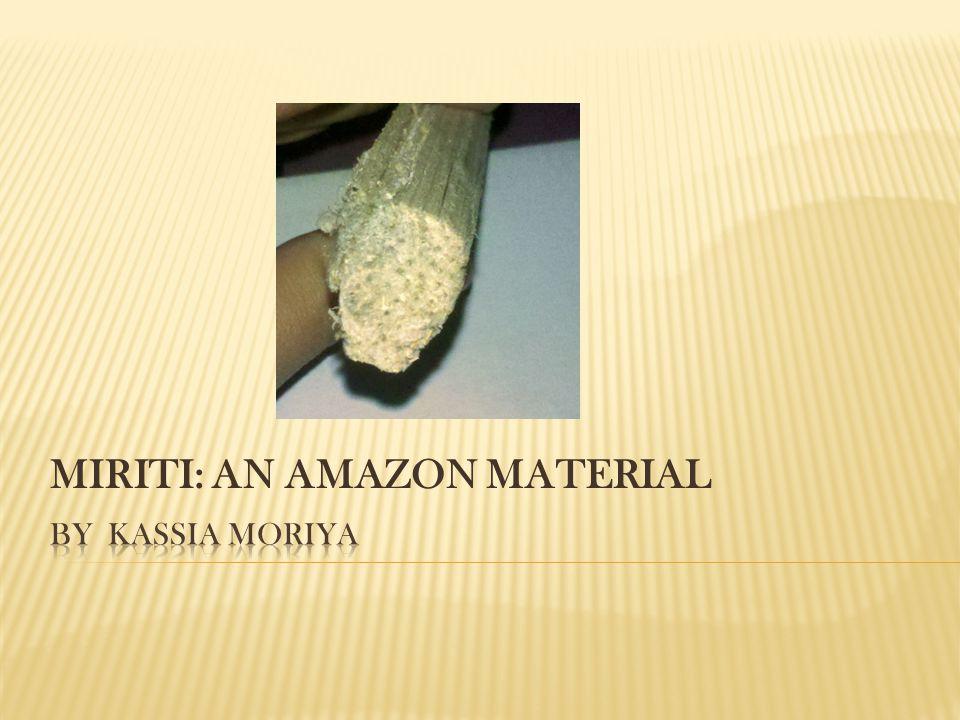 MIRITI: AN AMAZON MATERIAL