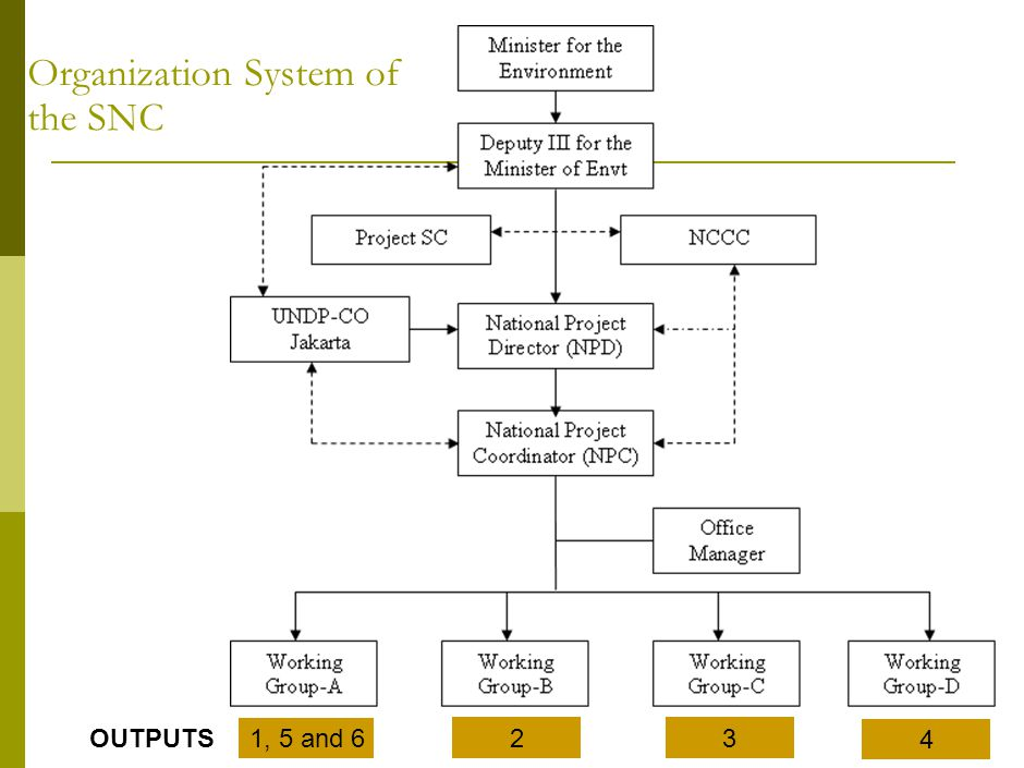 Organization System of the SNC 1, 5 and 6 23 4 OUTPUTS