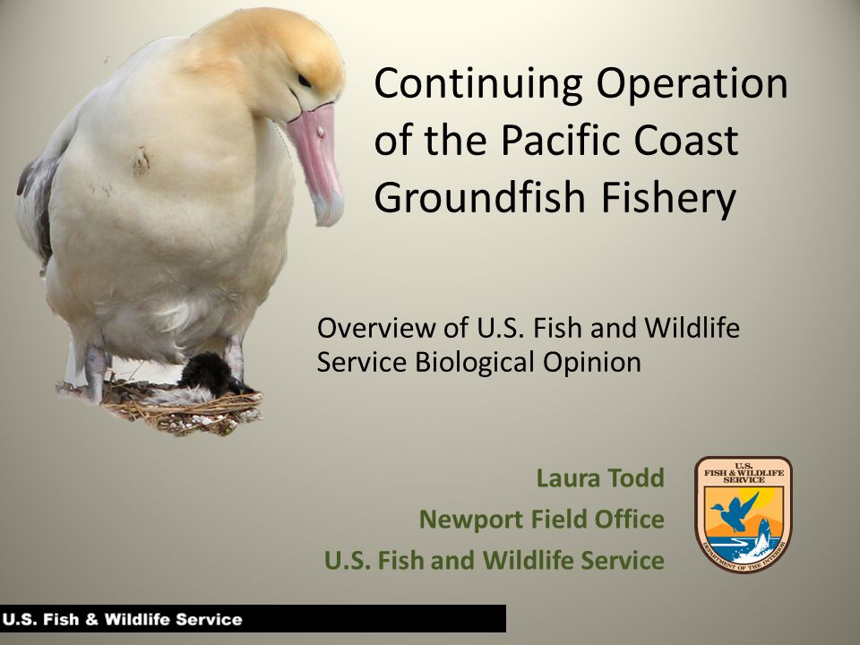 Continuing Operation of the Pacific Coast Groundfish Fishery Overview of U.S.