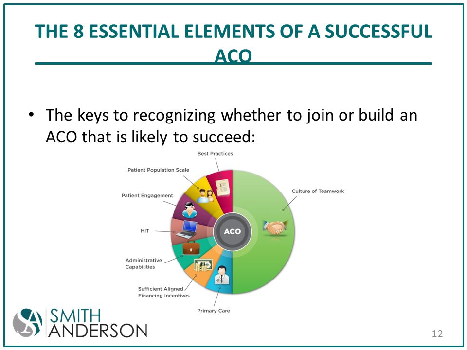 THE 8 ESSENTIAL ELEMENTS OF A SUCCESSFUL ACO The keys to recognizing whether to join or build an ACO that is likely to succeed: 12