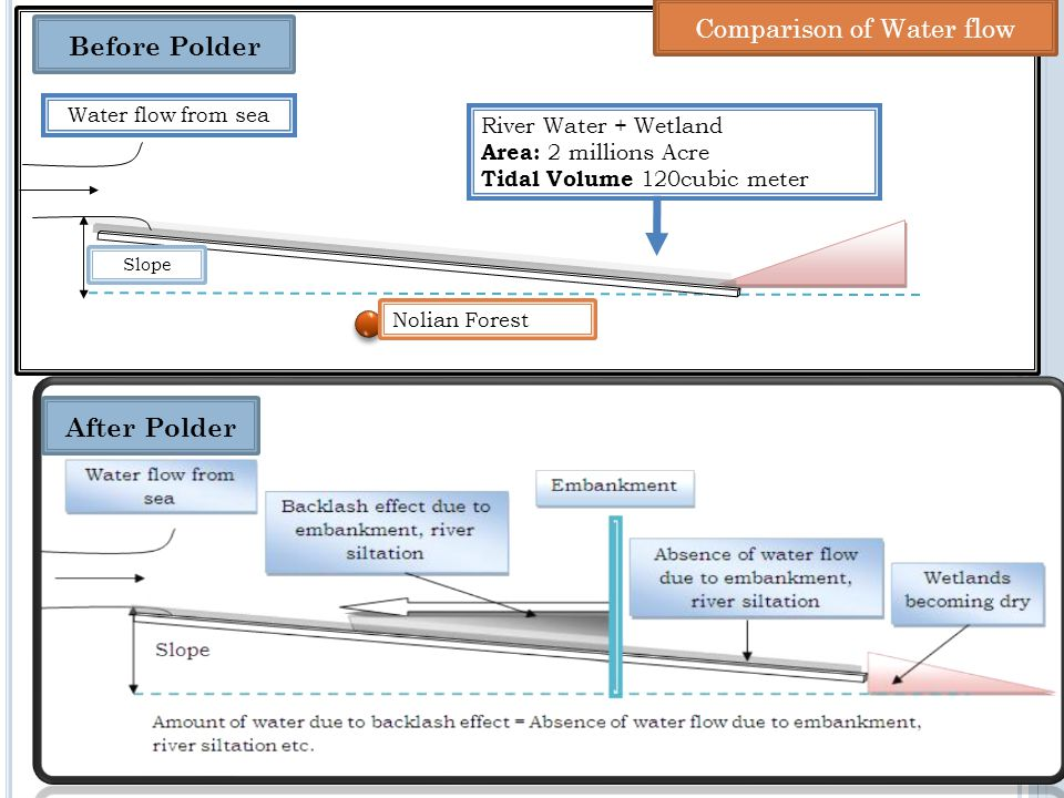 Water flow from sea River Water + Wetland Area: 2 millions Acre Tidal Volume 120cubic meter After Polder Before Polder Nolian Forest Slope Comparison of Water flow