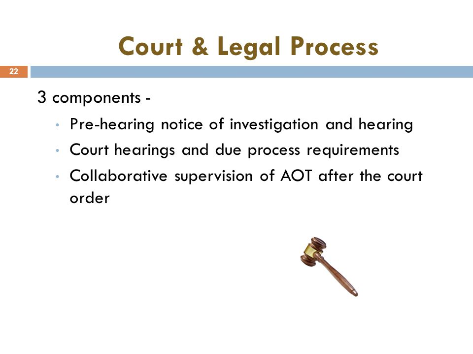 Court & Legal Process 22 3 components - Pre-hearing notice of investigation and hearing Court hearings and due process requirements Collaborative supervision of AOT after the court order