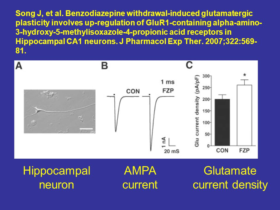 Song J, et al. Benzodiazepine withdrawal-induced glutamatergic plasticity involves up-regulation of GluR1-containing alpha-amino- 3-hydroxy-5-methylis