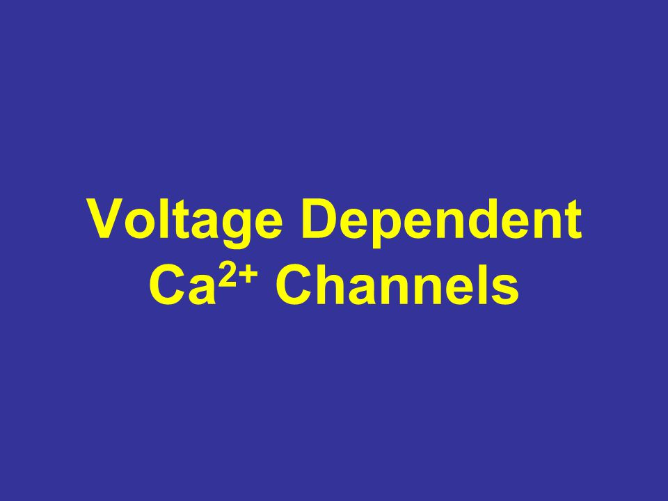 Voltage Dependent Ca 2+ Channels