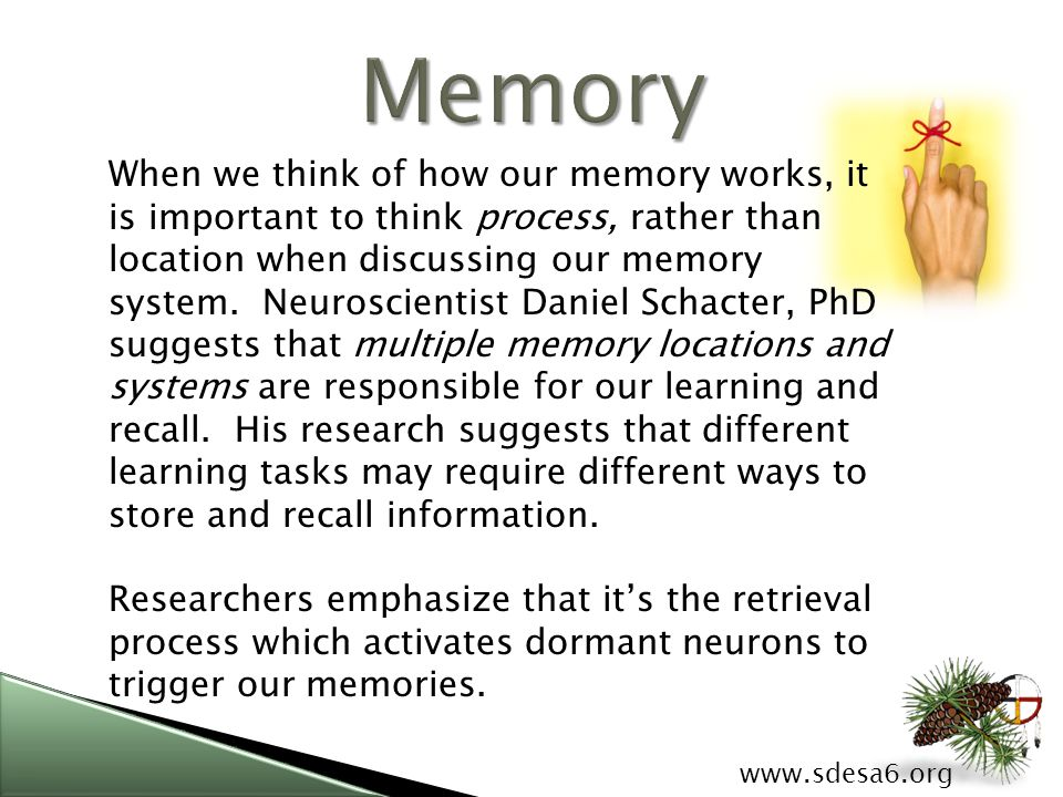 When we think of how our memory works, it is important to think process, rather than location when discussing our memory system.