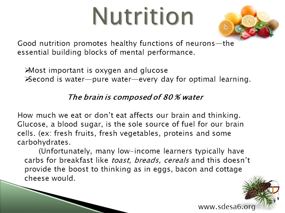 Good nutrition promotes healthy functions of neurons—the essential building blocks of mental performance.