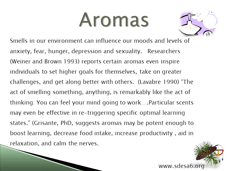 www.sdesa6.org Smells in our environment can influence our moods and levels of anxiety, fear, hunger, depression and sexuality.