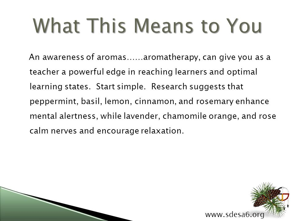 www.sdesa6.org An awareness of aromas……aromatherapy, can give you as a teacher a powerful edge in reaching learners and optimal learning states.