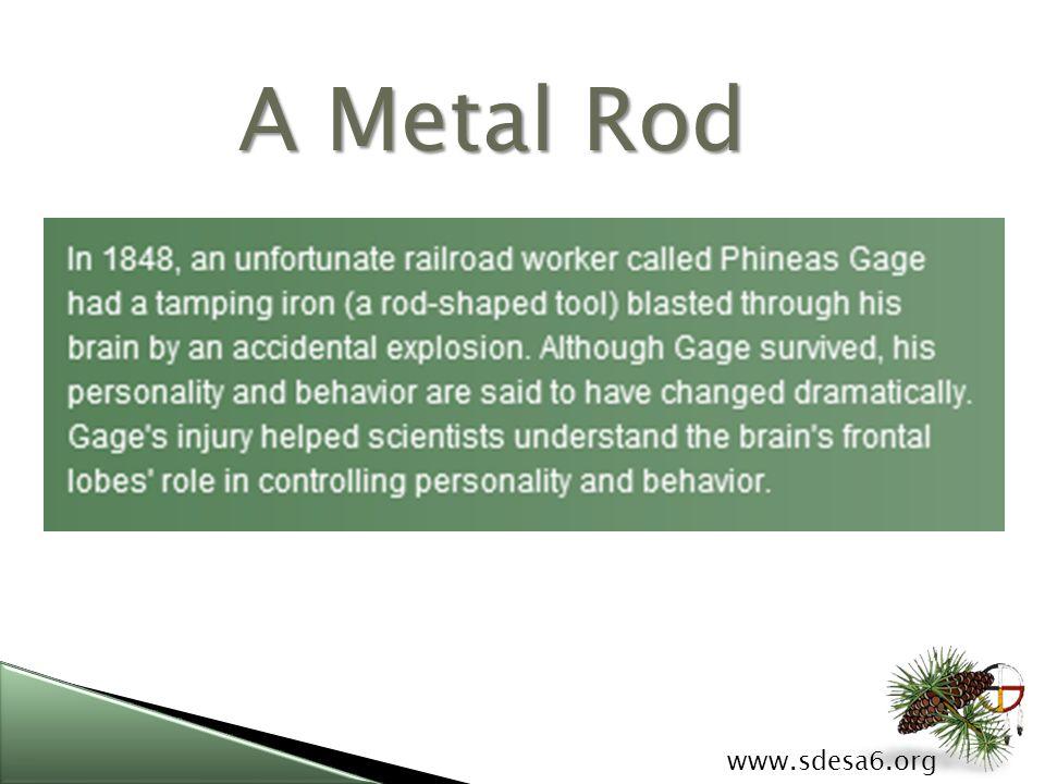 A Metal Rod