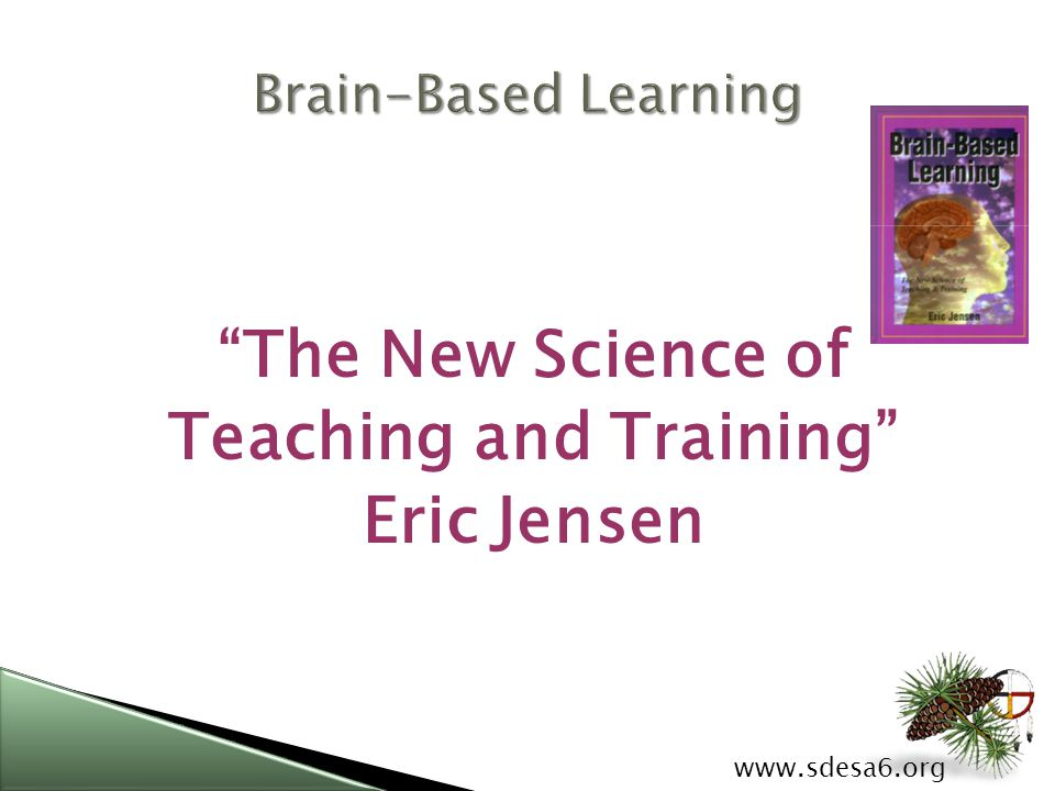 www.sdesa6.org Eric Jensen Eric Jensen has been a leading authority on the applications of brain research in education for more than 15 years.