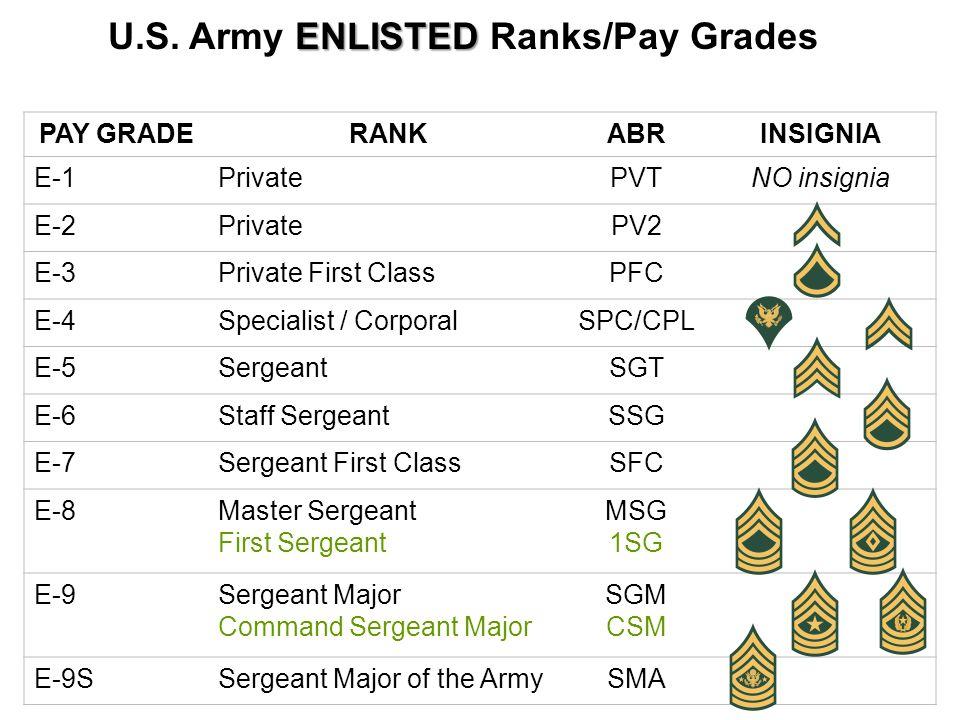PAY GRADERANKABRINSIGNIA E-1PrivatePVTNO insignia E-2PrivatePV2 E-3Private First ClassPFC E-4Specialist / CorporalSPC/CPL E-5SergeantSGT E-6Staff SergeantSSG E-7Sergeant First ClassSFC E-8Master Sergeant First Sergeant MSG 1SG E-9Sergeant Major Command Sergeant Major SGM CSM E-9SSergeant Major of the ArmySMA ENLISTED U.S.