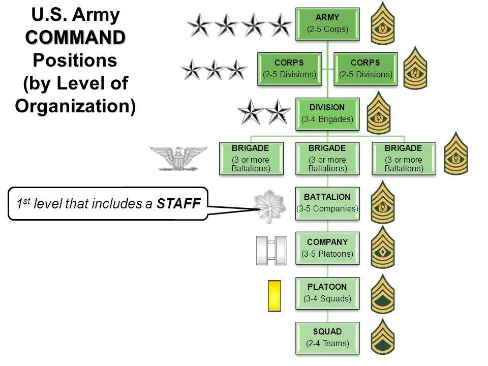 ARMY (2-5 Corps) DIVISION (3-4 Brigades) BRIGADE (3 or more Battalions) BRIGADE (3 or more Battalions) BATTALION (3-5 Companies) COMPANY (3-5 Platoons) PLATOON (3-4 Squads) SQUAD (2-4 Teams) BRIGADE (3 or more Battalions) CORPS (2-5 Divisions) CORPS (2-5 Divisions) COMMAND U.S.