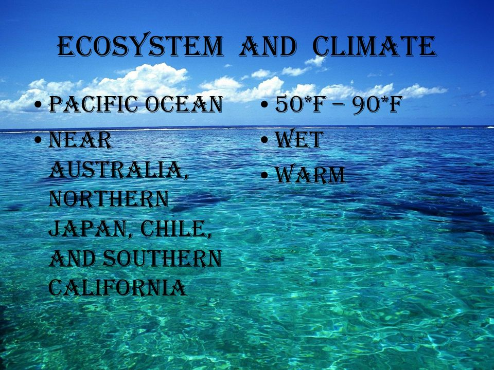Ecosystem and Climate Pacific Ocean Near Australia, Northern Japan, Chile, and Southern California 50*F – 90*F Wet Warm