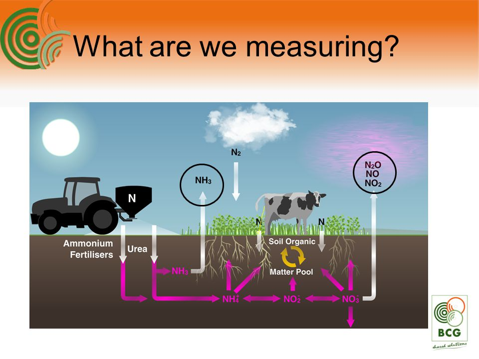 What are we measuring