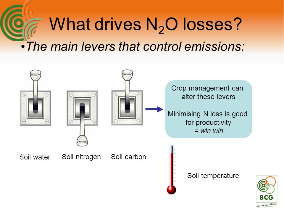 The main levers that control emissions: What drives N 2 O losses.