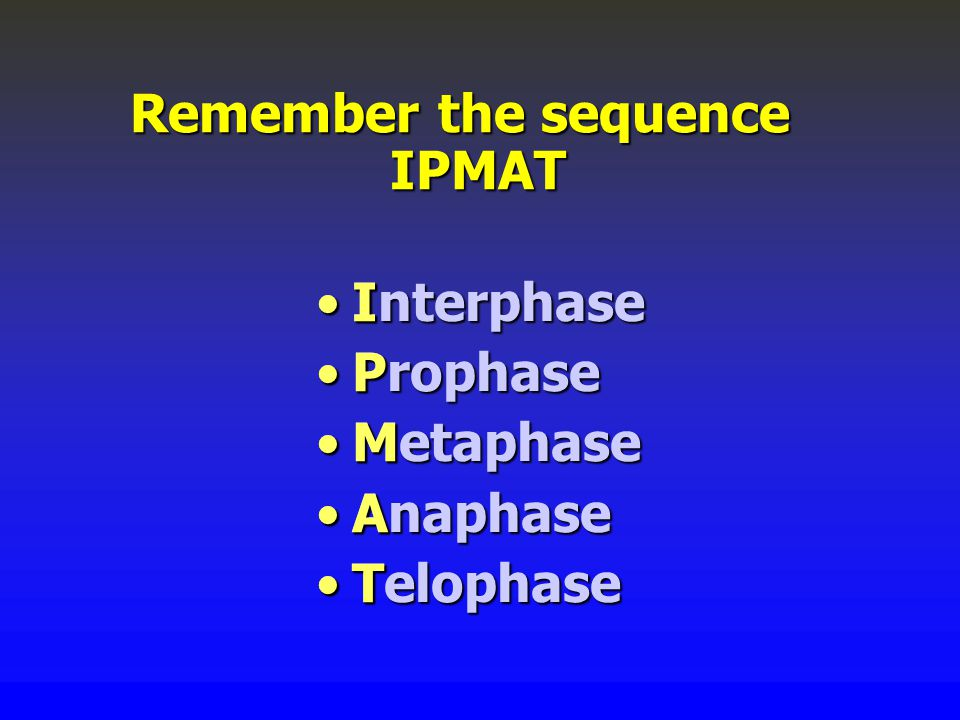 InterphaseInterphase ProphaseProphase MetaphaseMetaphase AnaphaseAnaphase TelophaseTelophase Remember the sequence IPMAT I P M A T