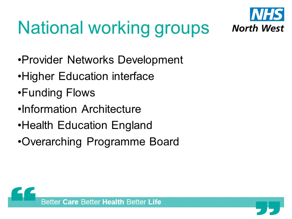 Better Care Better Health Better Life National working groups Provider Networks Development Higher Education interface Funding Flows Information Architecture Health Education England Overarching Programme Board