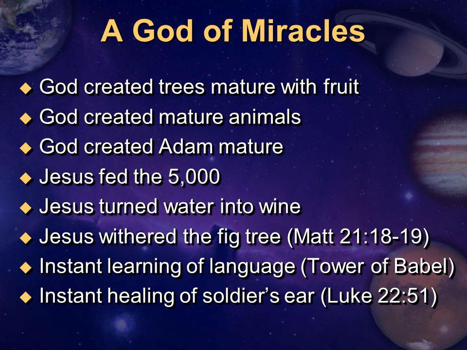 u God created trees mature with fruit u God created mature animals u God created Adam mature u Jesus fed the 5,000 u Jesus turned water into wine u Je