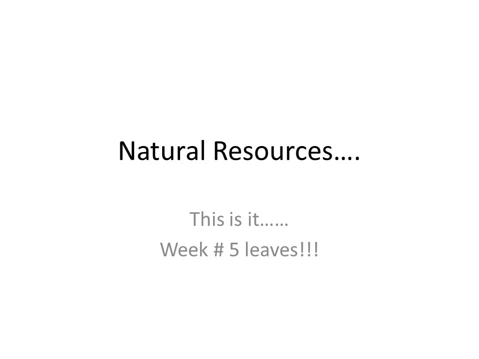 Natural Resources…. This is it…… Week # 5 leaves!!!