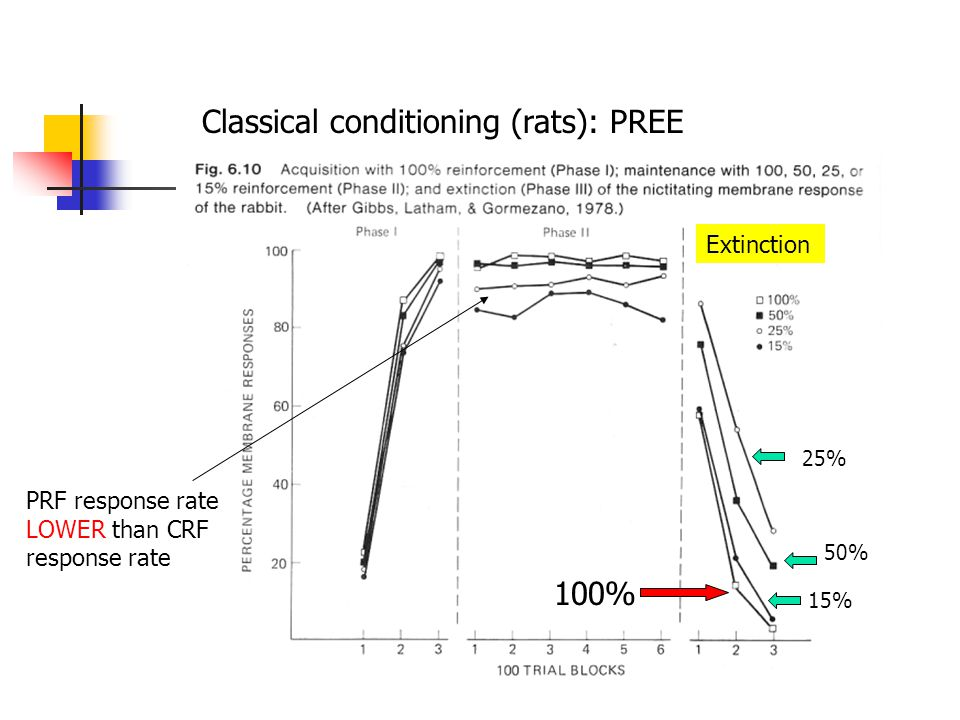 Classical conditioning (rats): PREE 25% 50% 100% Extinction PRF response rate LOWER than CRF response rate 15%