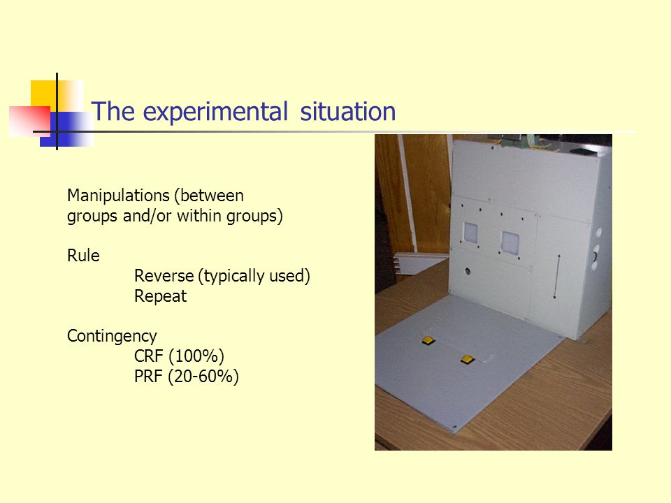 The experimental situation Manipulations (between groups and/or within groups) Rule Reverse (typically used) Repeat Contingency CRF (100%) PRF (20-60%)