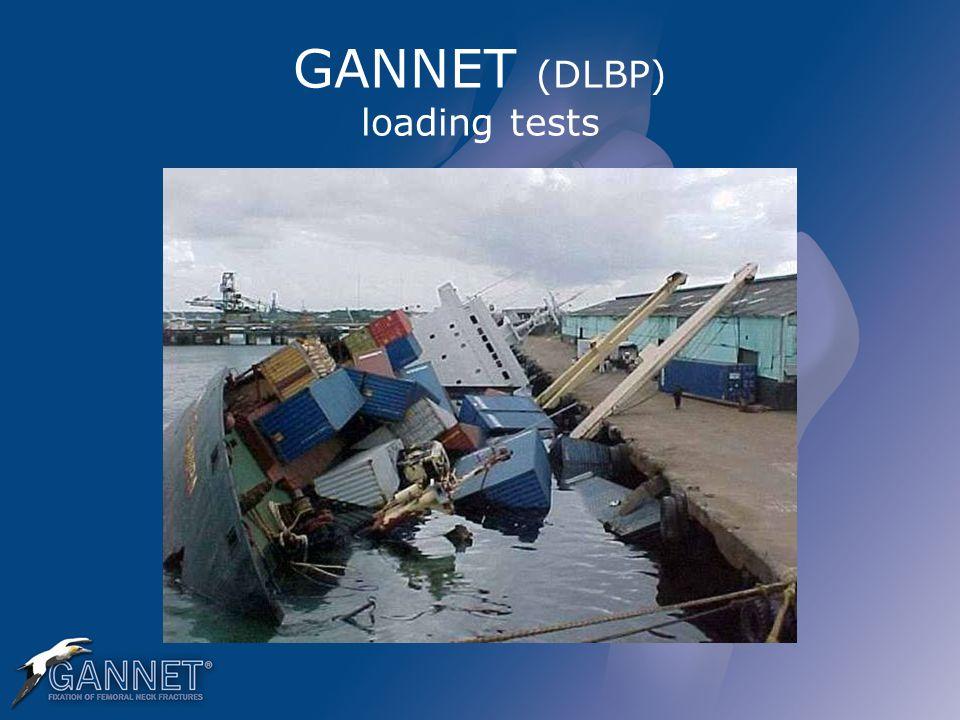 GANNET (DLBP) loading tests