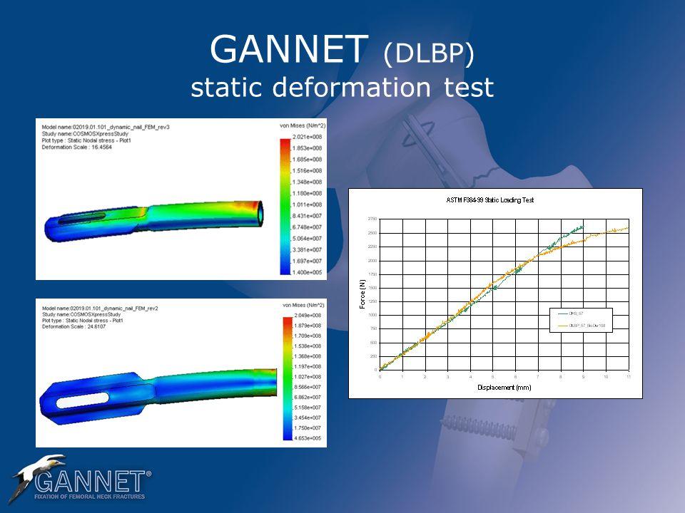 GANNET (DLBP) static deformation test