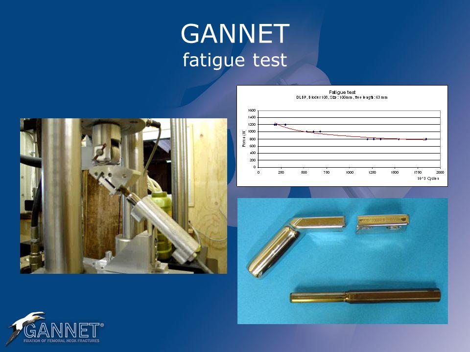 GANNET fatigue test