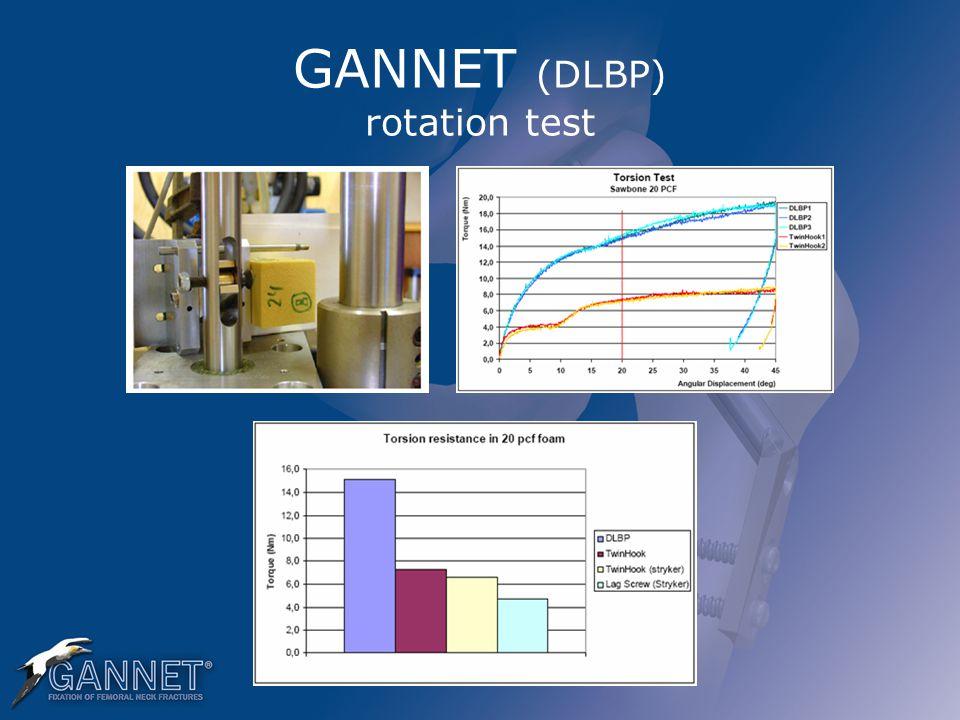 GANNET (DLBP) rotation test