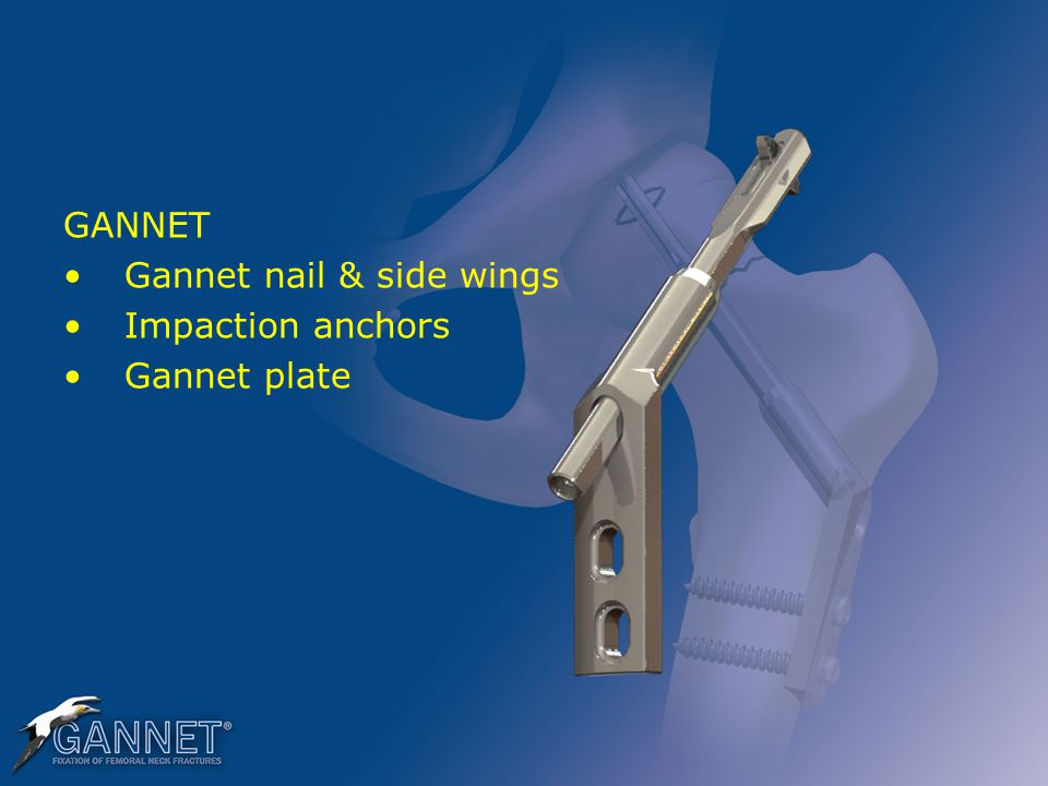 GANNET Gannet nail & side wings Impaction anchors Gannet plate