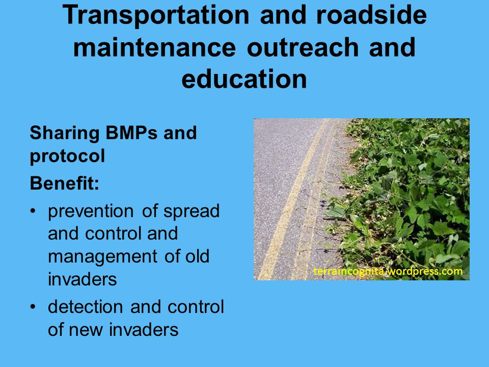 Transportation and roadside maintenance outreach and education Sharing BMPs and protocol Benefit: prevention of spread and control and management of old invaders detection and control of new invaders terraincognita.wordpress.com