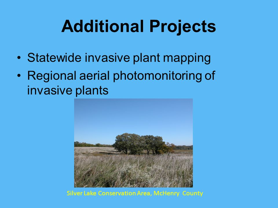 Additional Projects Statewide invasive plant mapping Regional aerial photomonitoring of invasive plants Silver Lake Conservation Area, McHenry County
