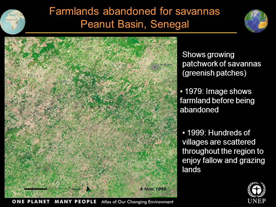 Farmlands abandoned for savannas Peanut Basin, Senegal Shows growing patchwork of savannas (greenish patches) 1979: Image shows farmland before being abandoned 1999: Hundreds of villages are scattered throughout the region to enjoy fallow and grazing lands