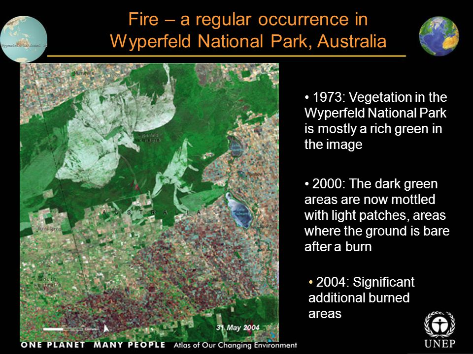 Fire – a regular occurrence in Wyperfeld National Park, Australia 1973: Vegetation in the Wyperfeld National Park is mostly a rich green in the image 2000: The dark green areas are now mottled with light patches, areas where the ground is bare after a burn 2004: Significant additional burned areas