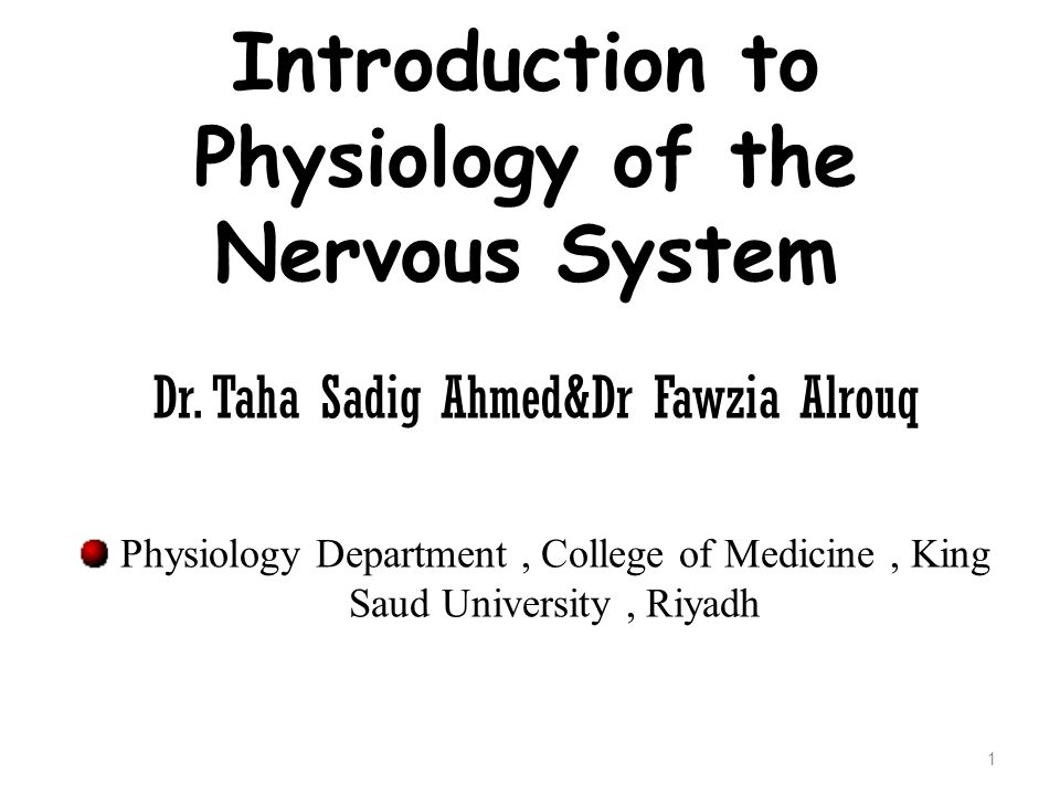 Objectives  At the end of this lecture the student should : understand that the nervous system can be classified in more than one way, depending on the purpose of the study undertaken.