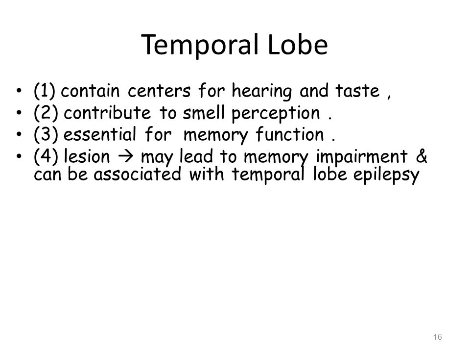 Frontal Lobe Responsible for initiation and execution of voluntary movement.