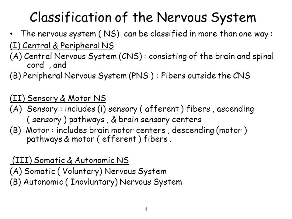 Methods of Studying Physiology of the Nervous System 5