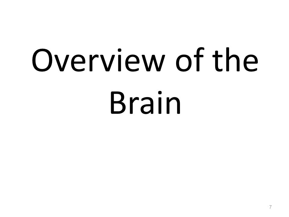 Components of The Brain A/ Telencephalon  (1) Cerebrum and (2) Basal Ganglia ( collection of grey matter situated inside the cerebral hemispheres ) B/ Diencephalon  Mainly : (1) Thalamus ( mainly a relay station for sensory pathways in their way to the cerebral cortex ) (2) Hypothalamus ( contains cesnter for autonomic and endocrine control ) 8 C/ Brainstem  (1) Midbrain (2) Pons (3) Medulla E/ Cerebellum