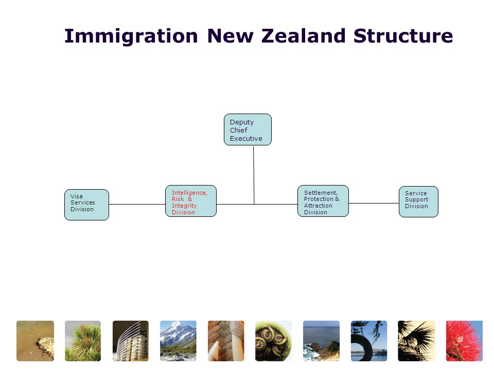 Immigration New Zealand Structure Deputy Chief Executive Visa Services Division Intelligence, Risk & Integrity Division Settlement, Protection & Attraction Division Service Support Division