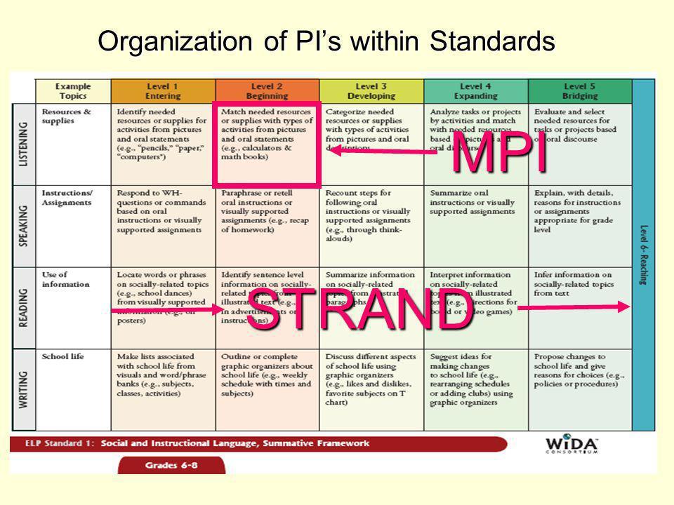 Organization of PI's within Standards STRAND MPI