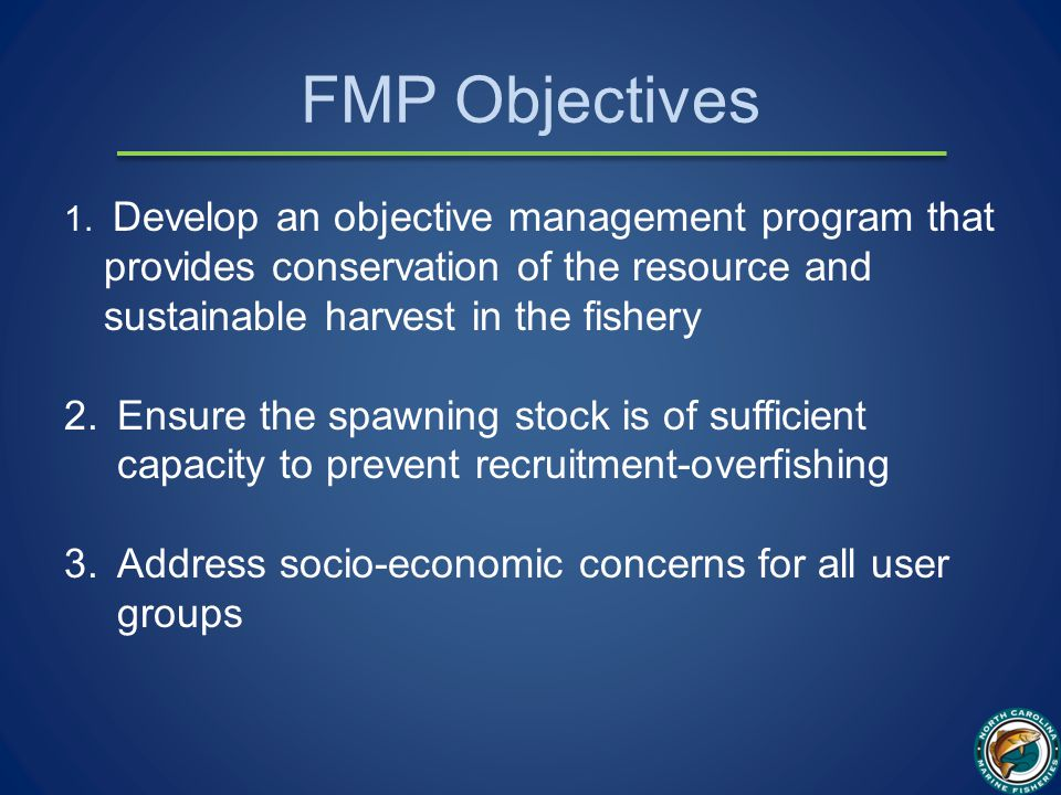 FMP Objectives 1.