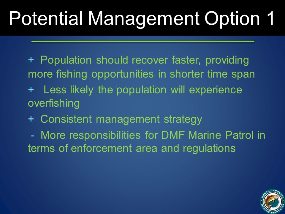 Potential Management Option 1 + Population should recover faster, providing more fishing opportunities in shorter time span + Less likely the population will experience overfishing + Consistent management strategy - More responsibilities for DMF Marine Patrol in terms of enforcement area and regulations