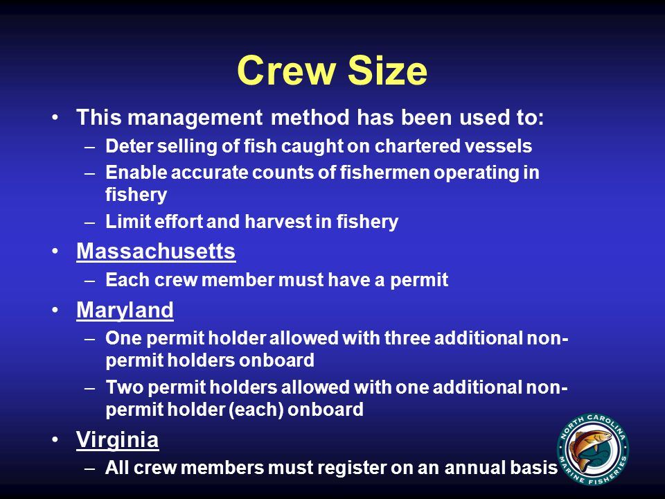 Crew Size This management method has been used to: –Deter selling of fish caught on chartered vessels –Enable accurate counts of fishermen operating in fishery –Limit effort and harvest in fishery Massachusetts –Each crew member must have a permit Maryland –One permit holder allowed with three additional non- permit holders onboard –Two permit holders allowed with one additional non- permit holder (each) onboard Virginia –All crew members must register on an annual basis